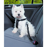 ceinture-de-sécurité-chien